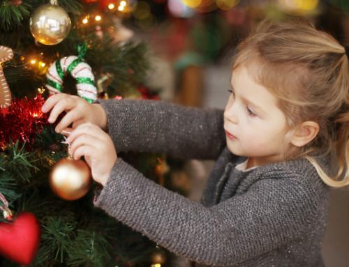 Műfenyőt vagy igazi karácsonyfát? Mutatjuk, melyik éri meg jobban (HelloVidék)