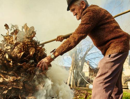 Egész évben tilos a kerti hulladékok égetése, sokan elégedetlenek miatta (Bama.hu)