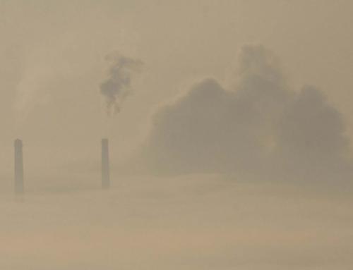 Különleges módszerekkel tisztulhat Pécs levegője (Pécsma.hu)